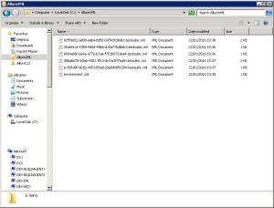 Generated Allure XML